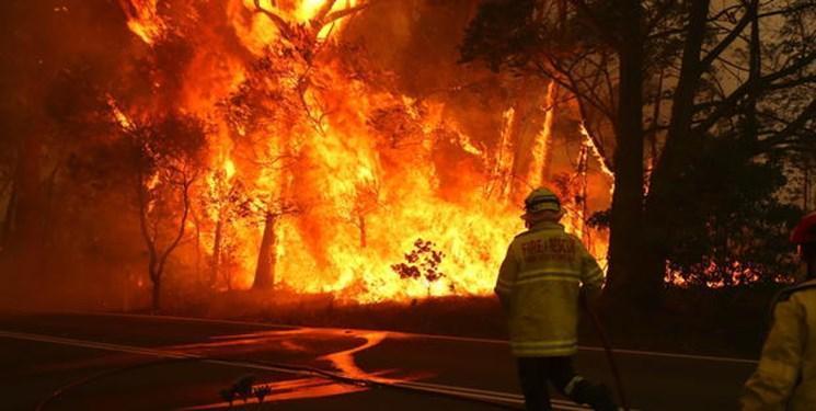 اعلام شرایط فوق العاده در استرالیا درپی گرمای بی سابقه و آتس سوزی های مهیب